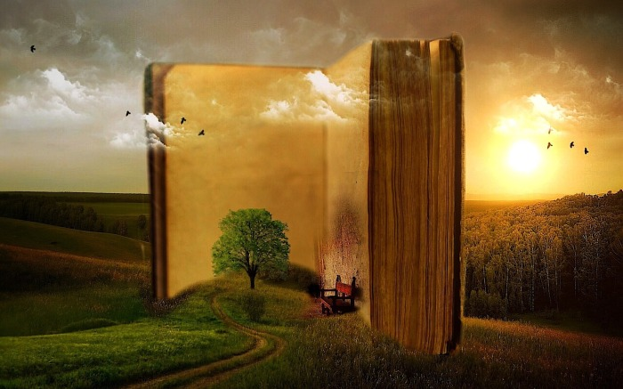 How To Spot A BookAddict